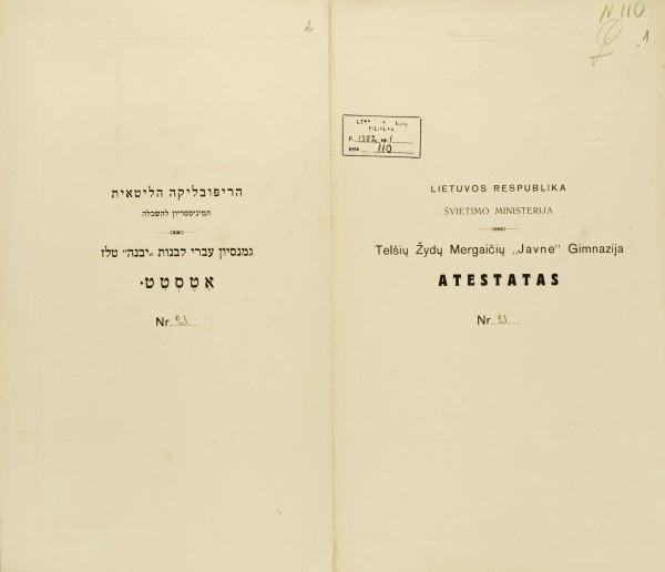 BKAVA1382-110c-d